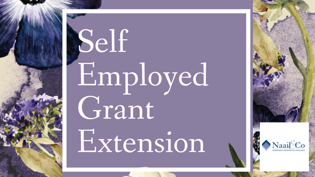 Self Employed Grant extension