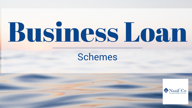 Business Loan schemes