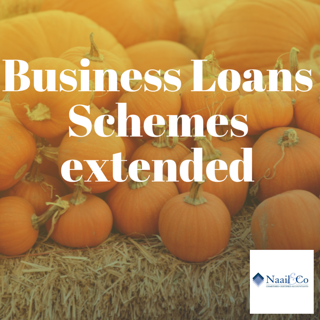 Business loan schemes extended
