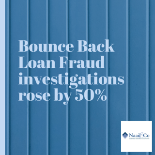 Bounce back loan fraud investigations