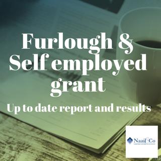 Furlough & self employed grant report
